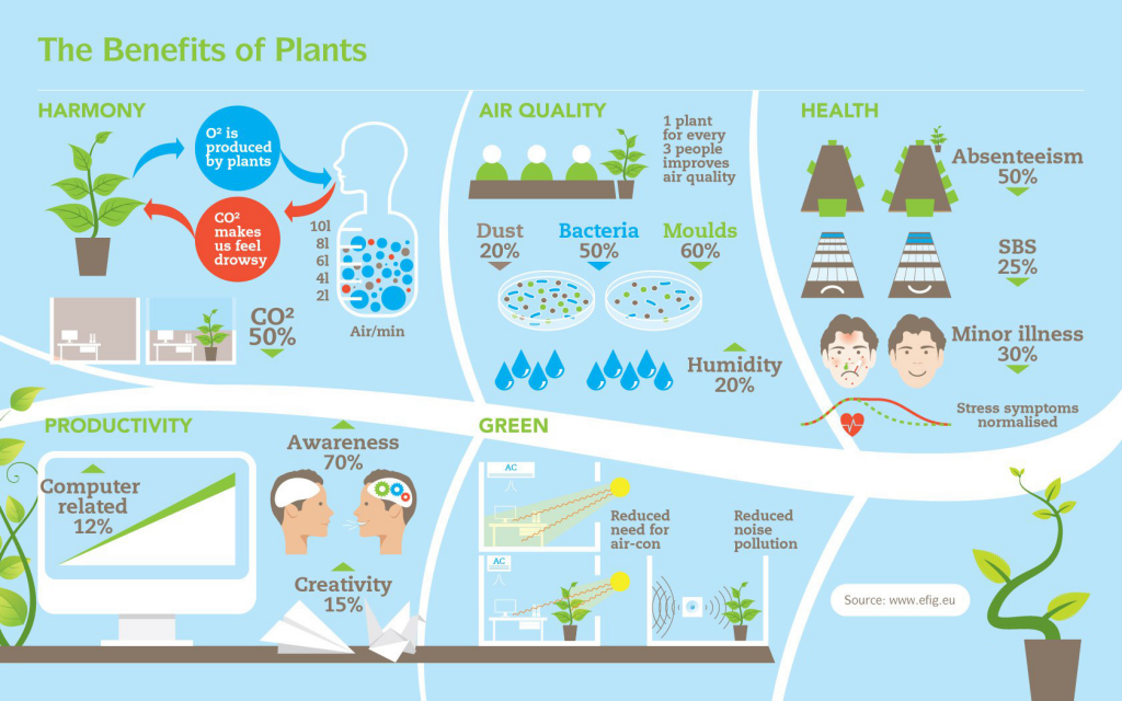 benefitsofindoorplants_infographic